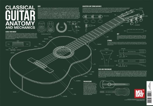 Review  Classical Guitar Anatomy And Mechanics  Poster