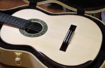 Dominelli Guitar - Guitar + Case