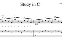 Study in C by Tarrega -Sample