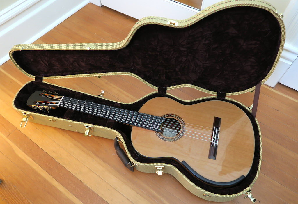 2013 Dominelli Classical Guitar This Is Classical Guitar