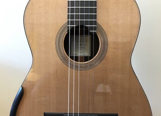 My New 2018 Douglass Scott Classical Guitar