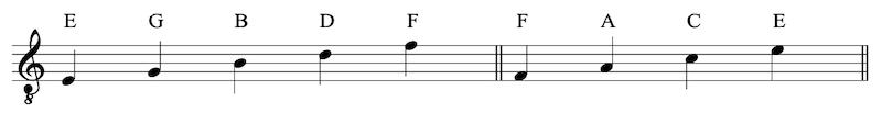 Memorize the Music Notation