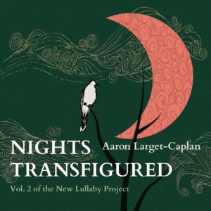 Nights Transfigured